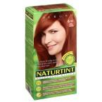NATURTINT® ilgalaikiai plaukų dažai be amoniako, DARK AMBER BLONDE 6.45 (165 ml)