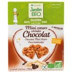 Avižinės širdelės su šokoladu, ekologiškos (100 g)