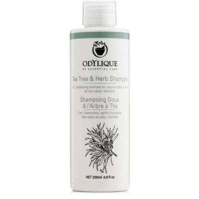 Arbatmedžio ir žolelių šampūnas, ekologiškas (200 ml)