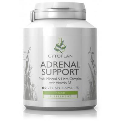 "Maisto papildas ""Adrenal Support"" su vitaminu B5 (60 kaps.)"