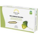Ginkmedžio geriamasis ekstraktas ampulėse, ekologiškas. Maisto papildas (20 amp. x 15 ml)